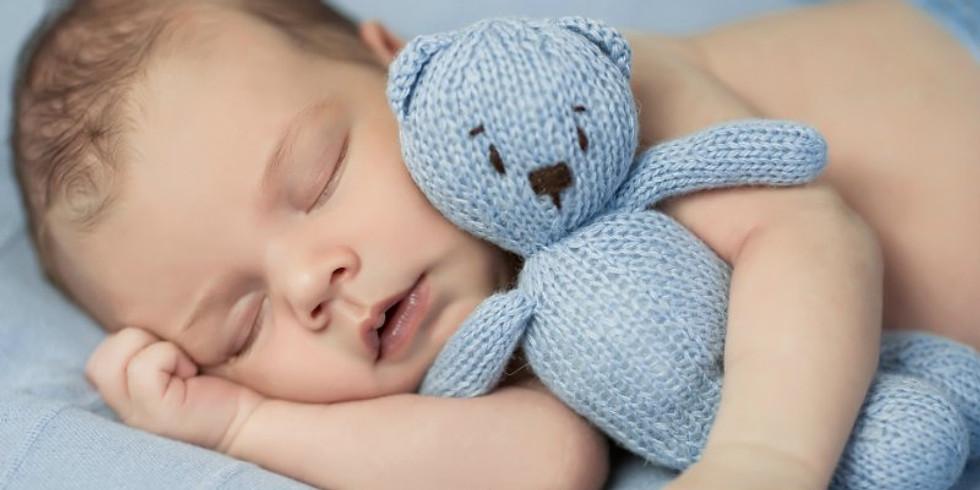 Sleep Neuroscience