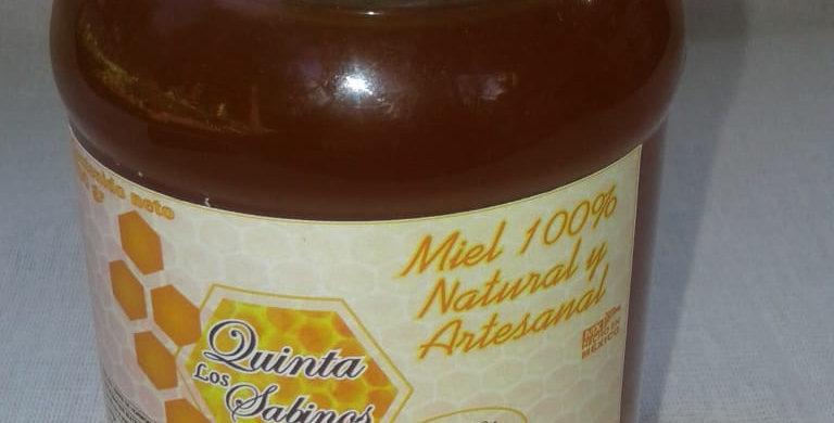 700 gr. de Miel Artesanal de Quinta los Sabinos