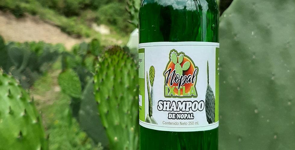 Shampoo de nopal mediano