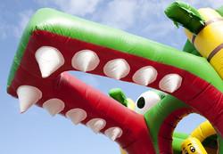 krokodil5.jpg