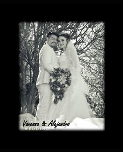 VANESSA Y ALEJANDRO079