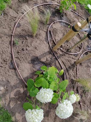 Beregening mogelijk in plantvakken