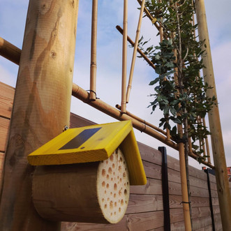 Klein bijenhotel