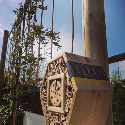 Leibomen met bijenhotel.jpg