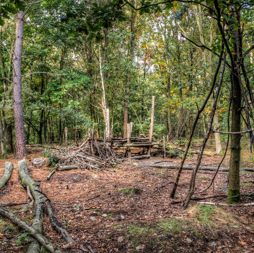 Kamp bouwen in bos
