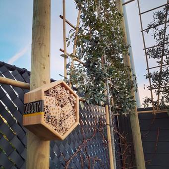 Gratis DARREN bijenhotel bij plaatsing Steeneik Leibomen