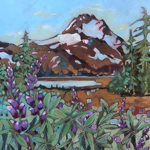 """""""Mt. Jefferson and Lupine"""""""