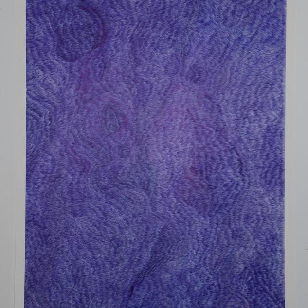 Carte Bleue N°6