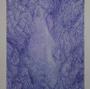 Carte Bleue N°5