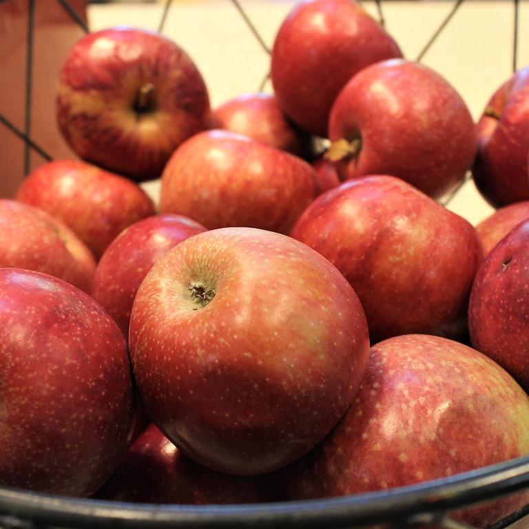 National Apple Cider Day- Local Apple Cider Tasting!