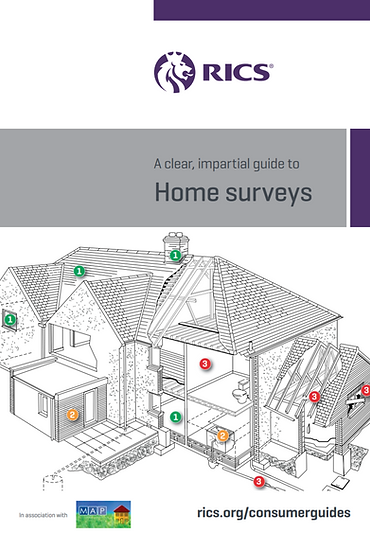 Home Surveyinfo.PNG