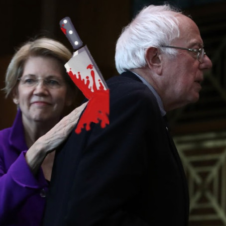 How Warren, and the Professional Class Left Undermined Sanders 2020