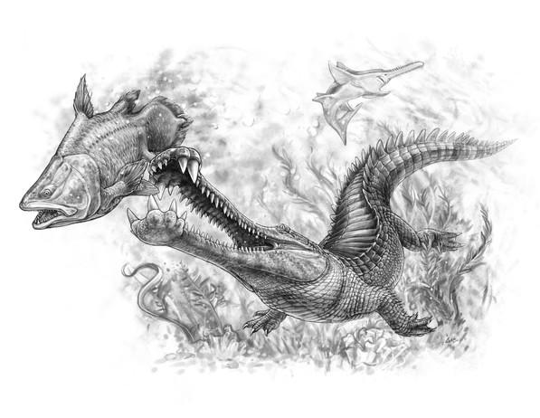 Elosuchus