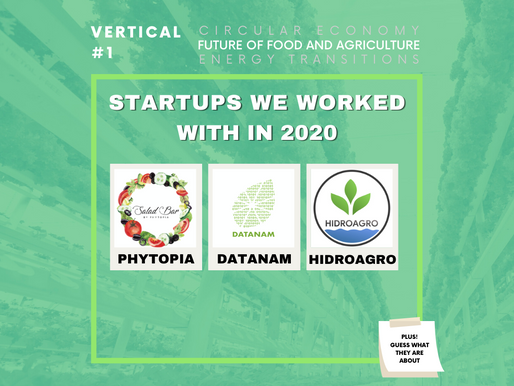We are mint to be | Food & Agriculture Startups from 2020