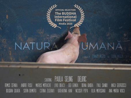 Natura umană pusă pe sticlă