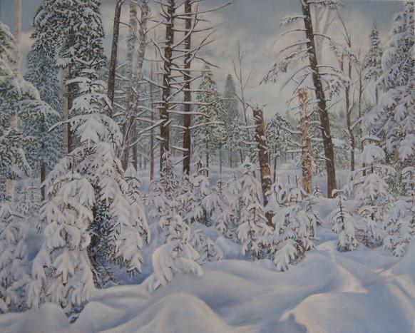 Laurentians Winter