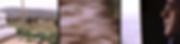 Screen Shot 2020-06-22 at 2.55.01.png