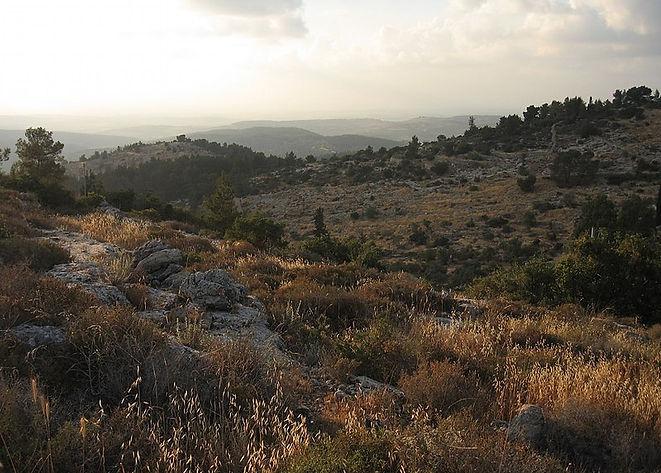 800px-Beit_Mahsir_&_Beth_mehir_07.jpg