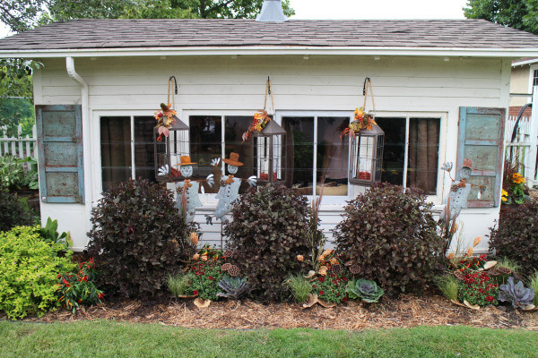 Bachman's Fall Ideas House