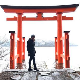 שער טורי על אגם אשי האקונה יפן