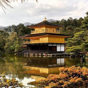 המקדש המוזהב קיוטו