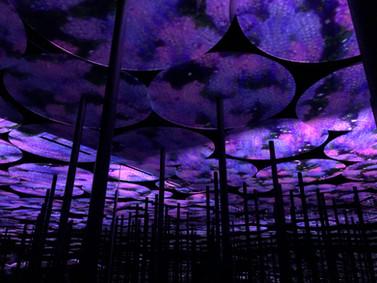 מוזיאון team lab טוקיו