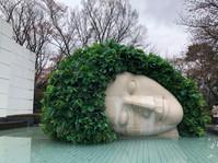 ראש צומח במוזיאון הפתוח האקונה