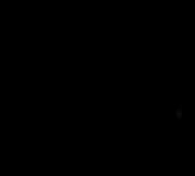 logo-cerna.png
