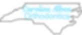 Albea Logo.png