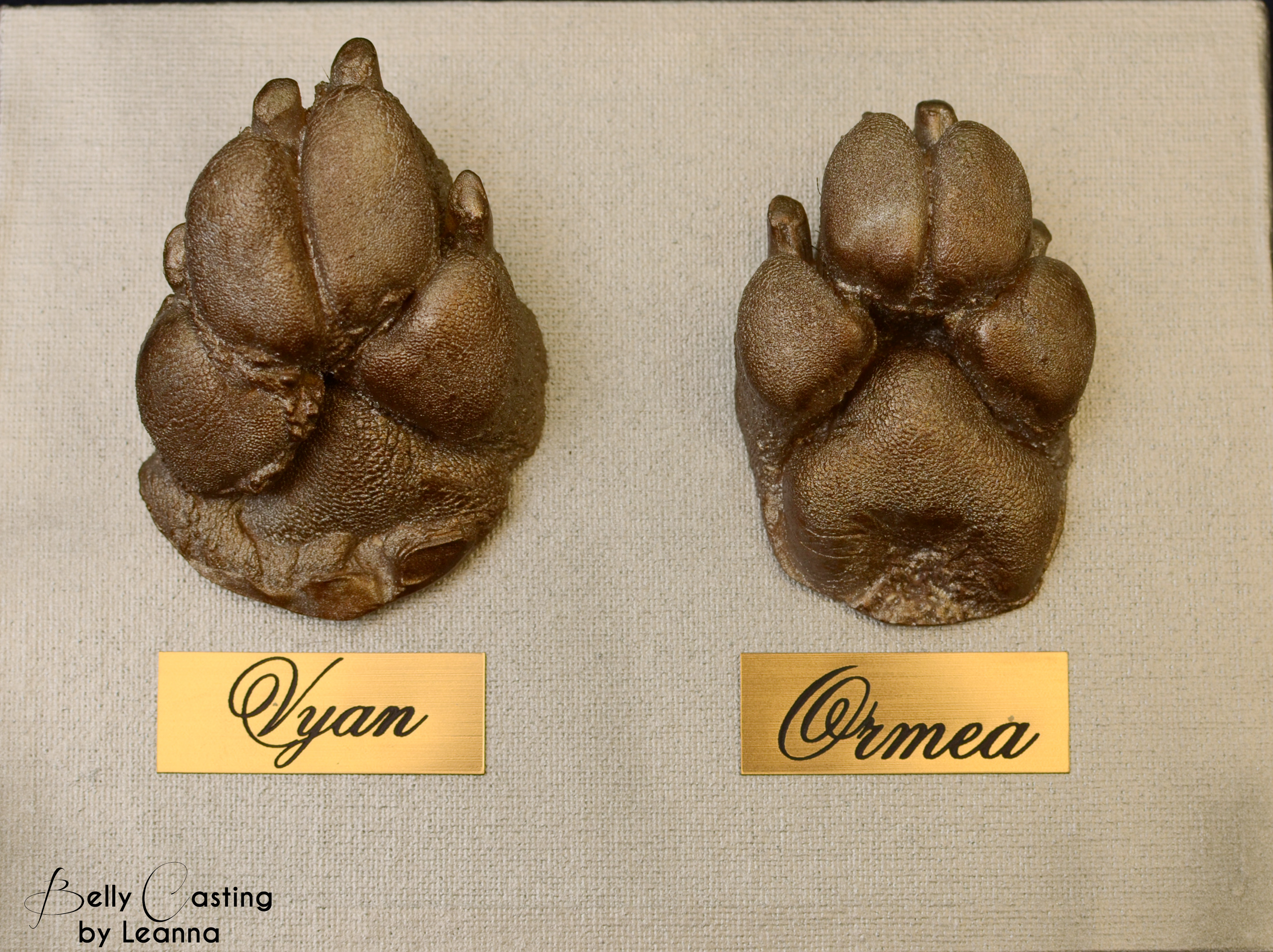Ormea and Vyan Paw casting