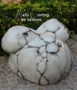 Lacy's Belly Cast