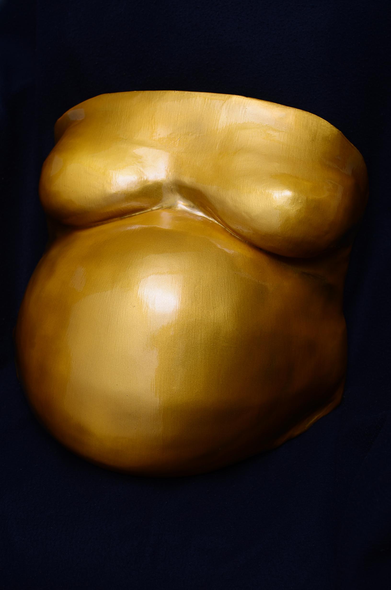 Metallic gold chest and tummy