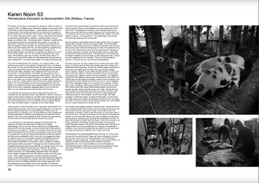 PF 10 pages 10 & 11