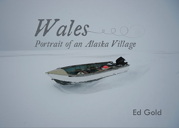 Wales Book Dust Jacket copy.jpg