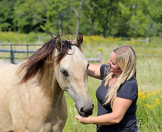 Facilitated Equine Experiential Learning