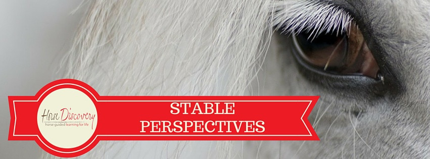 Stable Perspectives