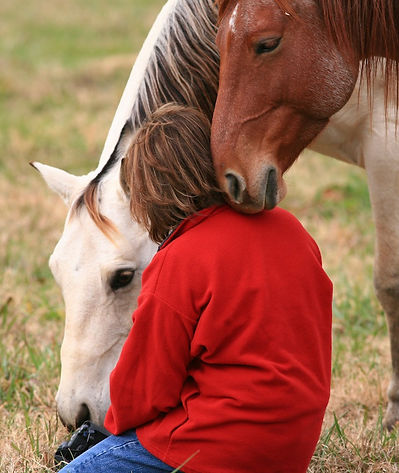 Horses Teach Self Awareness