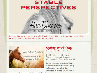 Stable Perspectives - Spring Newletter