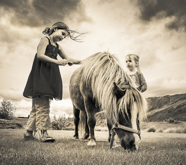 horses reduce stress in children