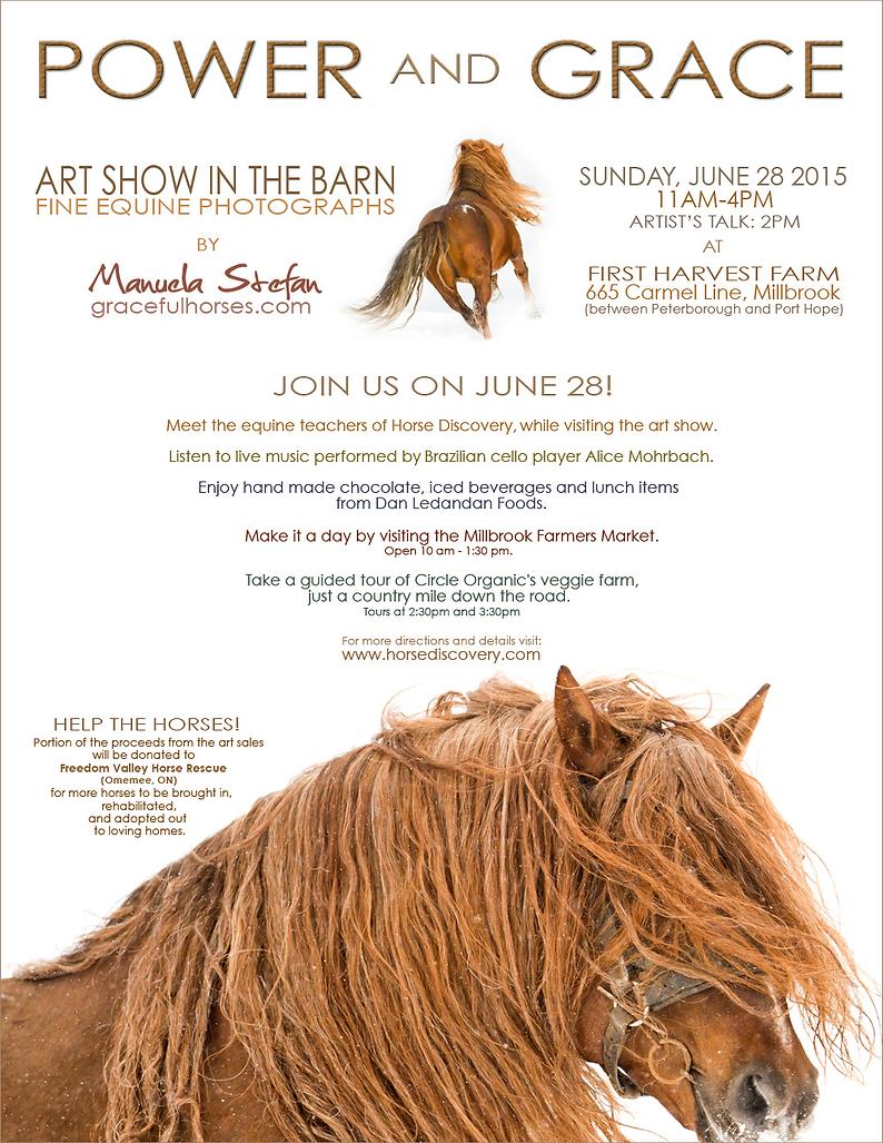 Art Show in the Barn-Manuela Stefan