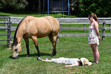 woman lays on grass with horse.jpg