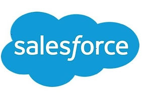 Sales force logo.jpg
