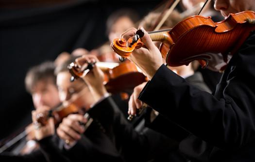 ViennArte Musicians.jpg
