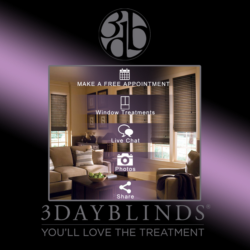 3 Day Blinds Campaign