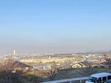 阪南市光陽台にてポスティング(1月後半チラシ⑩)