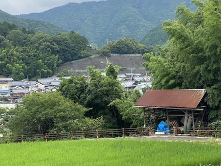 泉佐野市立大木小学校付近にてポスティング(7月後半チラシ①)