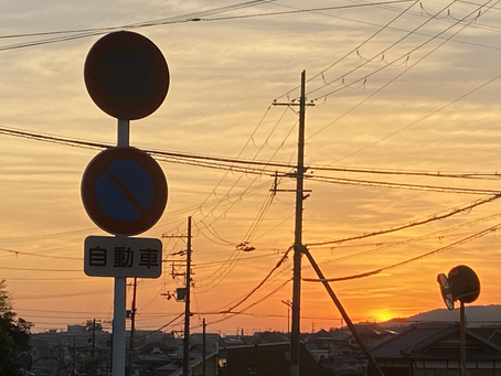 泉南郡熊取町全域にてポスティング(8月後半チラシ①)