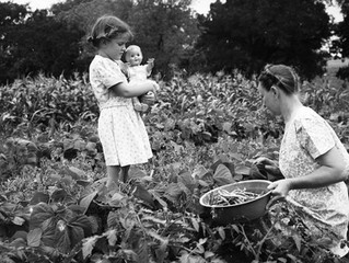 International Women's Day and Garden Clubs- Shaping America's Landscape