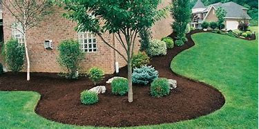 Spring bed tune ups with mulch