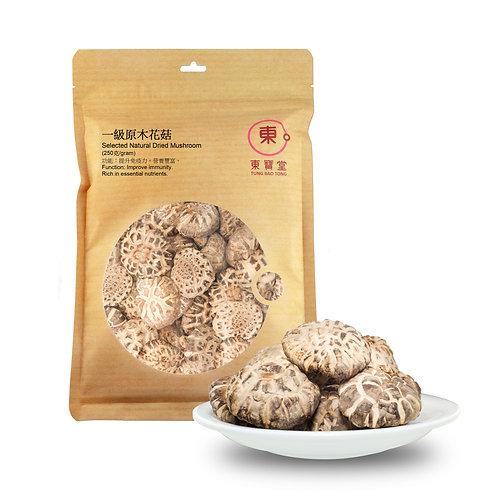 一級原木花菇